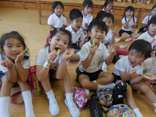 初野菜収穫美味!!!