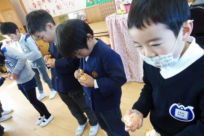 幼稚園のみかんを収穫して食べたよ☆:画像2