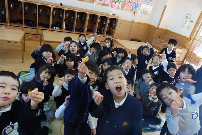 幼稚園のみかんを収穫して食べたよ☆:画像4