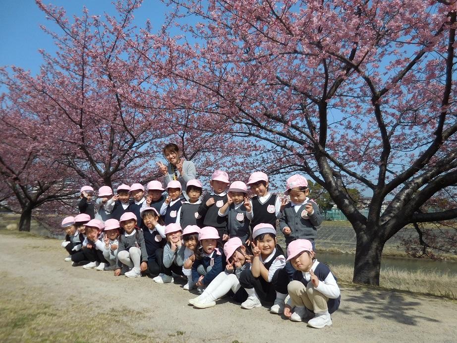 年少☆河津桜をみにいったよ:画像4