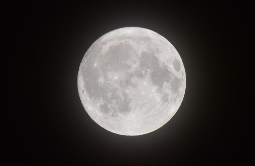見えたね中秋の名月:画像1