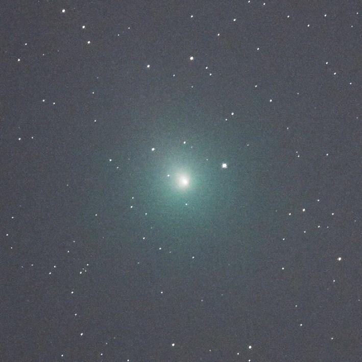 「ウィルタネン彗星とらえた」と、中日新聞で紹介。