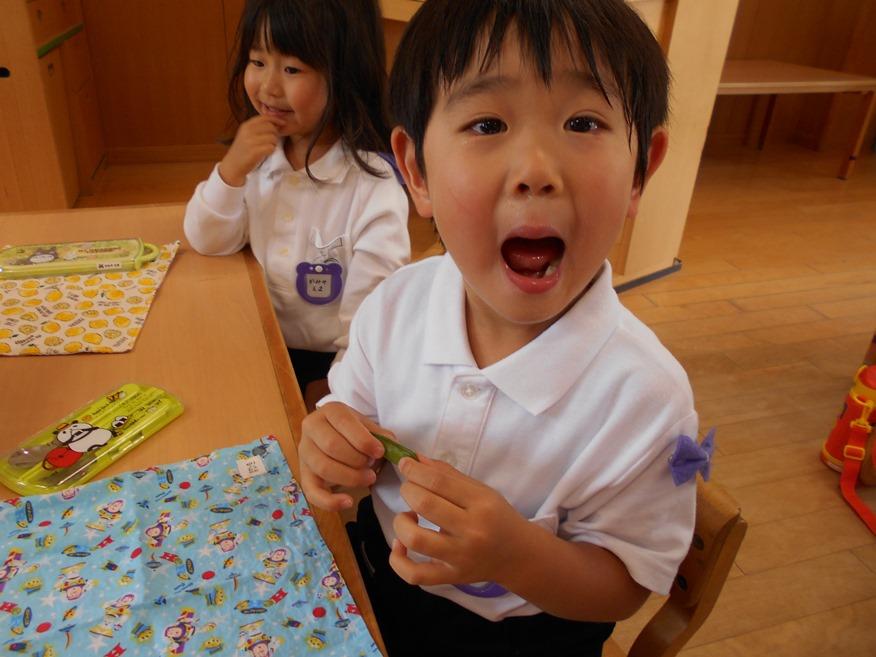 スナップエンドウを食べました☆ ~年少~:画像4