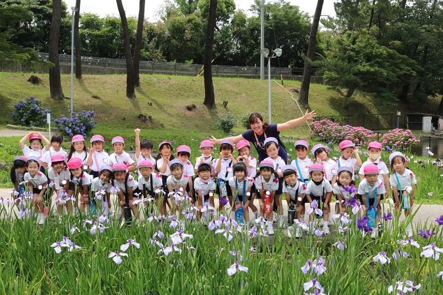 菖蒲を見に行ったよ☆:画像5