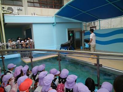 竹島水族館に行ってきました♡(年中)