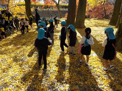 岡崎公園に行ったよ♡(年長):画像2