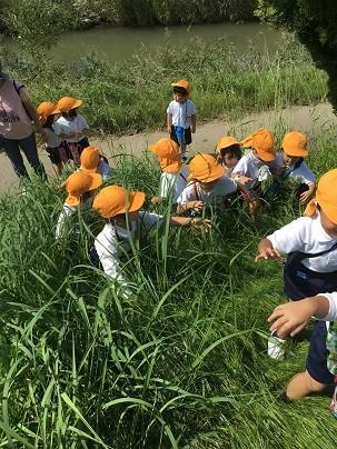 岡崎公園にお散歩に行ったよ♪(年少):画像2