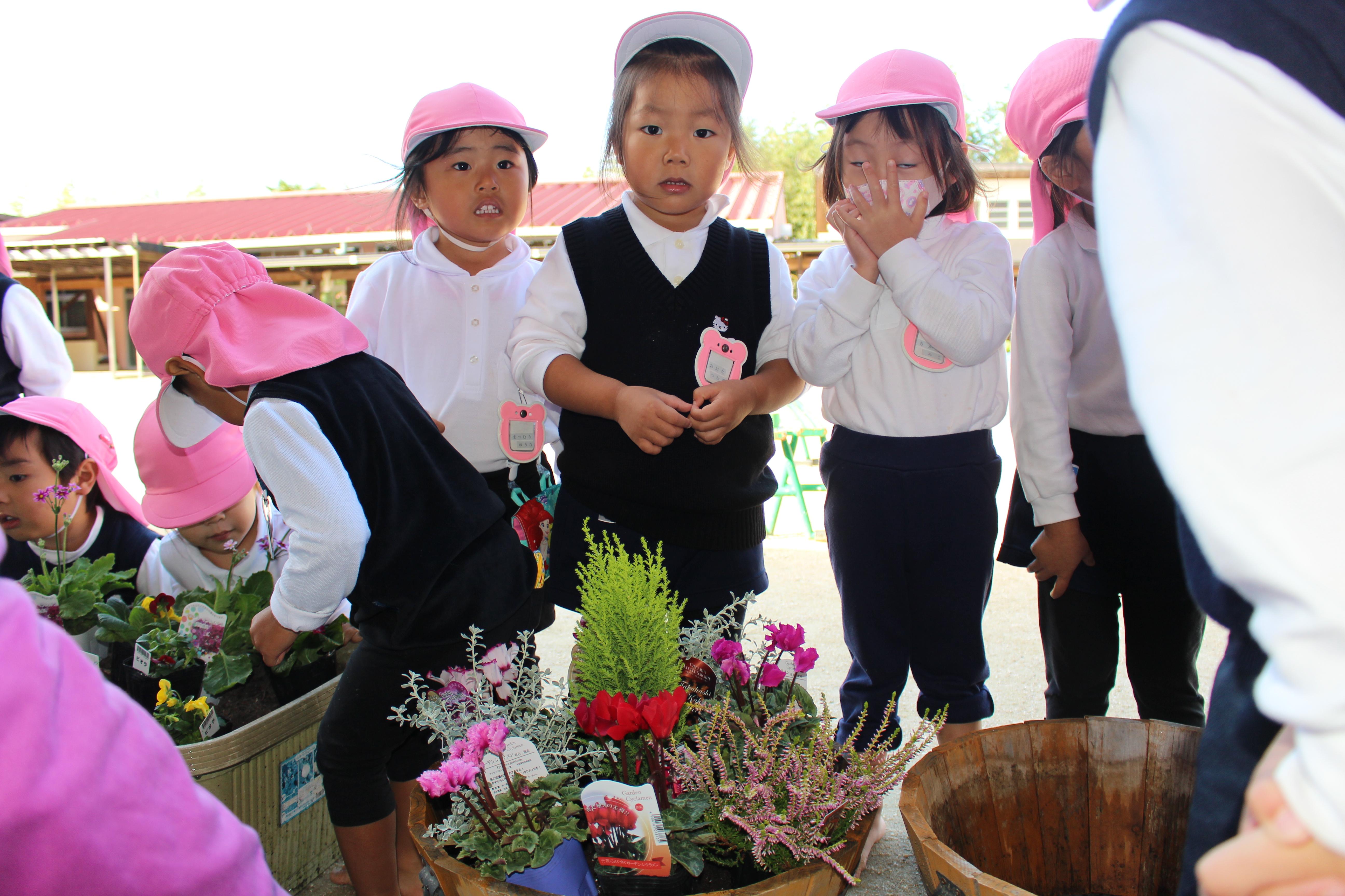 きれいなお花だね♡:画像1