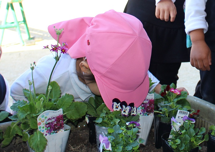 きれいなお花だね♡:画像2