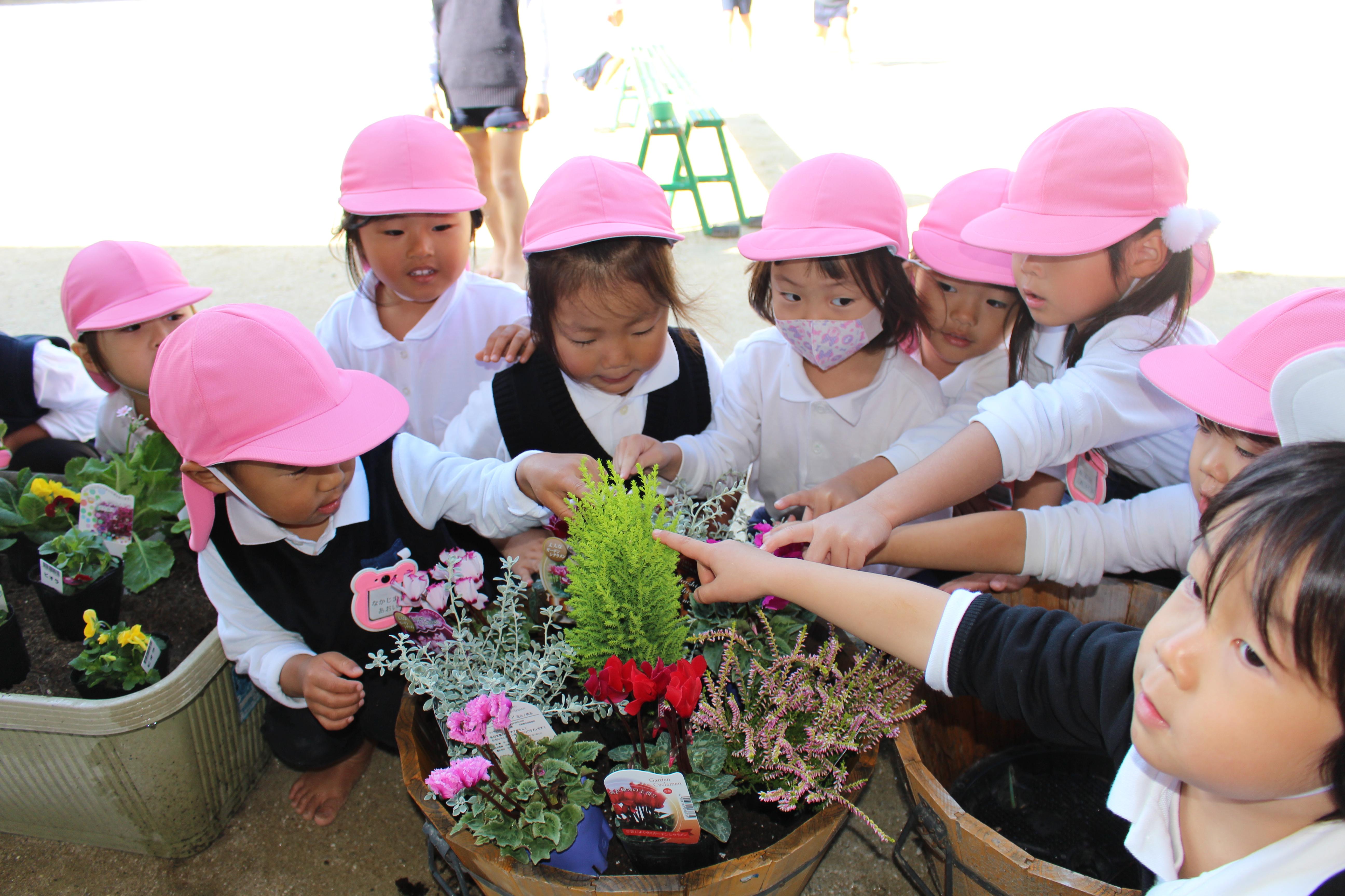 きれいなお花だね♡:画像4