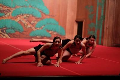 ダンス部が岡崎城内にある能楽堂で踊りました:画像2