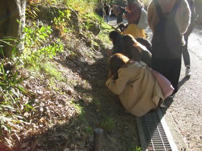 東公園で岡崎市との連携授業を行いました!